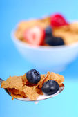 Spoonful of bran flakes with fruit — Stock Photo