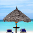 Постер, плакат: Thatched hut on a stretch of beach in Aruba