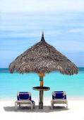 Thatched kulübe bir streç Beach Aruba — Stok fotoğraf