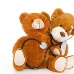 dos osos — Foto de Stock   #6301622