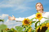 Sunflower satisfaction — Stock Photo