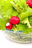 Lettuce and radish — Stock Photo