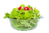 Lettuce and radishes in a bowl — Stock Photo