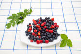 Berry mix with greens — Stock Photo