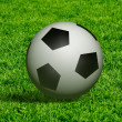 The soccer ball — Stock Photo