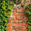 The Brick — Stockfoto