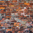 The brick wall — Stock Photo