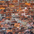 Stock Photo: The brick wall