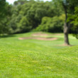 Beautiful Golf Park Landscape — Stock Photo