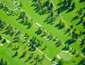 Aerial Golfing During Late Afternoon — Stock Photo