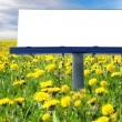 BIg blank billboard in field  — Stock Photo
