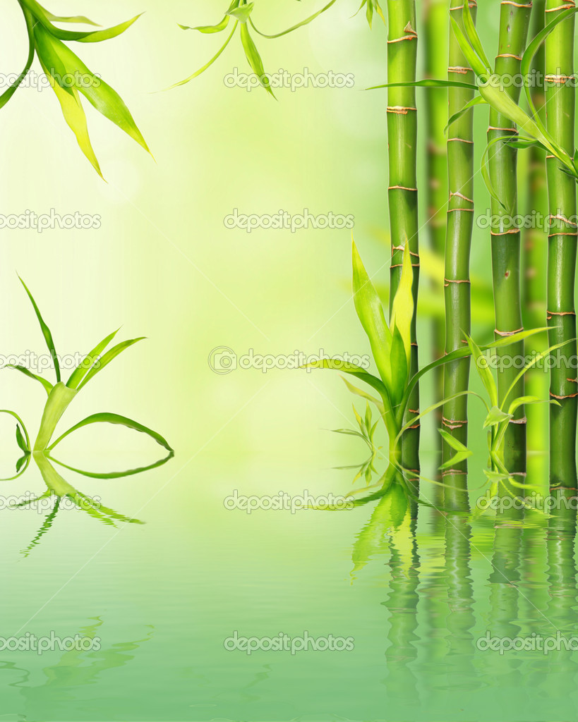 Bamboo background reflected on water surface — Stock Photo #5977630