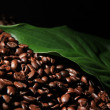 Coffee beans and green leaf close-up - Stock Photo