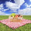 Picnic — Stock Photo #6097427