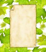 гранж бумаги — Стоковое фото