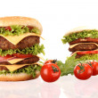 Hamburgers — Stock Photo #6248163