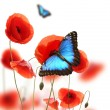Butterflies in poppy field — Stock Photo #6267903