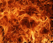Fire flames detail — Stock Photo