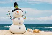 Vacances d'hiver — Photo
