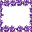 Purple Ribbon Border — Stock Photo #6319393