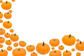 Pumpkin Border — Stock Photo