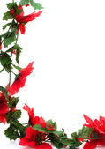 Poinsettia Border — Stock Photo