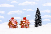 Gingerbread Houses — Stock Photo
