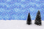 Winter Scene — Fotografia Stock