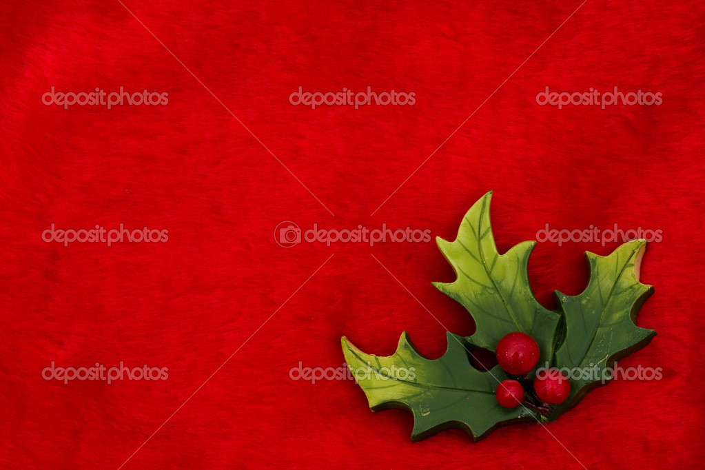 Holly leaves and berries on a red background, Christmas Time — Stock Photo #6326505
