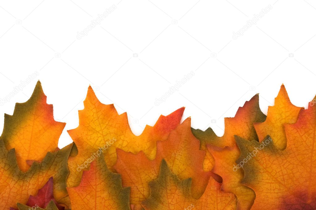 Fall leaves isolated on white at the bottom border, Autumn border — Stock Photo #6326560