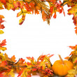 Autumn border — Stock Photo