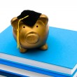Costs of an education — Stock Photo #6403520