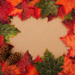 Fall Border — Stock Photo #6403692