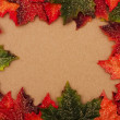 Stock Photo: Fall Border
