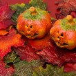 Halloween Fall Border — Stock Photo #6403821