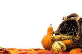 秋季的场景 — 图库照片