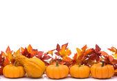 Autumn border — Stock Photo