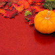 Fall Border — Stock Photo #6455784