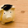 Education Savings — Stock Photo #6456623