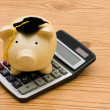 Education Savings — Stock Photo #6456728