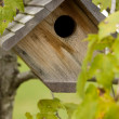 Birdhouse — Foto Stock #6462320
