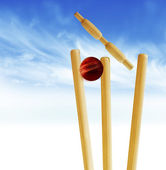 Cricket stumps — Stock Photo