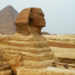 The Sphinx at Giza Egypt — Stock Photo