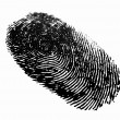 Finger print — Stock Photo #6030004