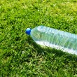 Stock Photo: Water bottle on grass
