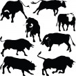 Bulls vector silhouettes — Stock Photo