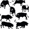 Bulls vector silhouettes — Stock Photo #6657655