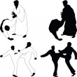 Combat sports Aikido — Stock Photo
