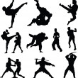 Combat sports silhouettes — Stock Photo