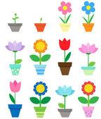 Flowers in pots — Stock Vector